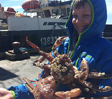 East Coast Canada, lobster catch, expedition education, Newfoundland